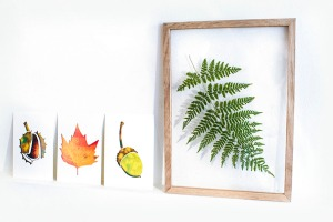 3 herfstkaartjes Mieknox wit website